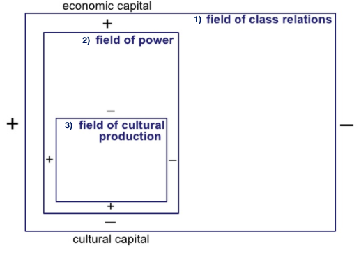 field of cultural producyion